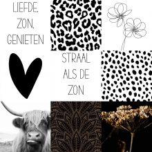 Tuinslinger 'Zwart/Wit'